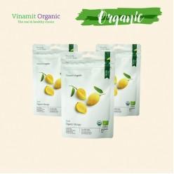 Xoài dẻo Organic 100g